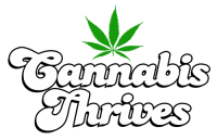 Cannabis Thrives